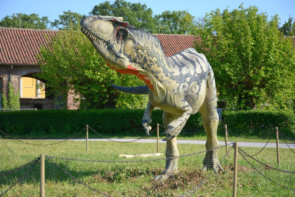 Allosaurus, foto by Daniela Morelli