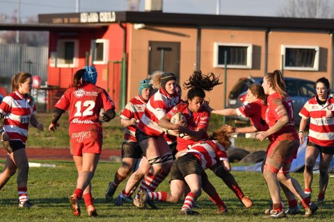 ringhio rugby