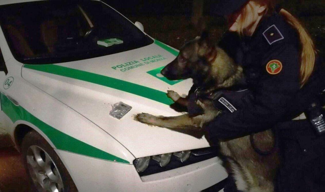 cane narco