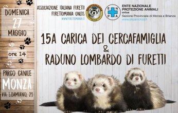 evento-Furettomania-canile-Monza-346x220.jpg