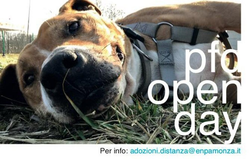 open day enpa