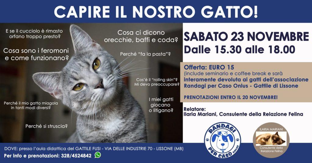 Capire il nostro gatto: seminario a Lissone - Monza in Diretta