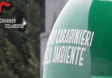Carabinieri-NOE-360x250.jpg